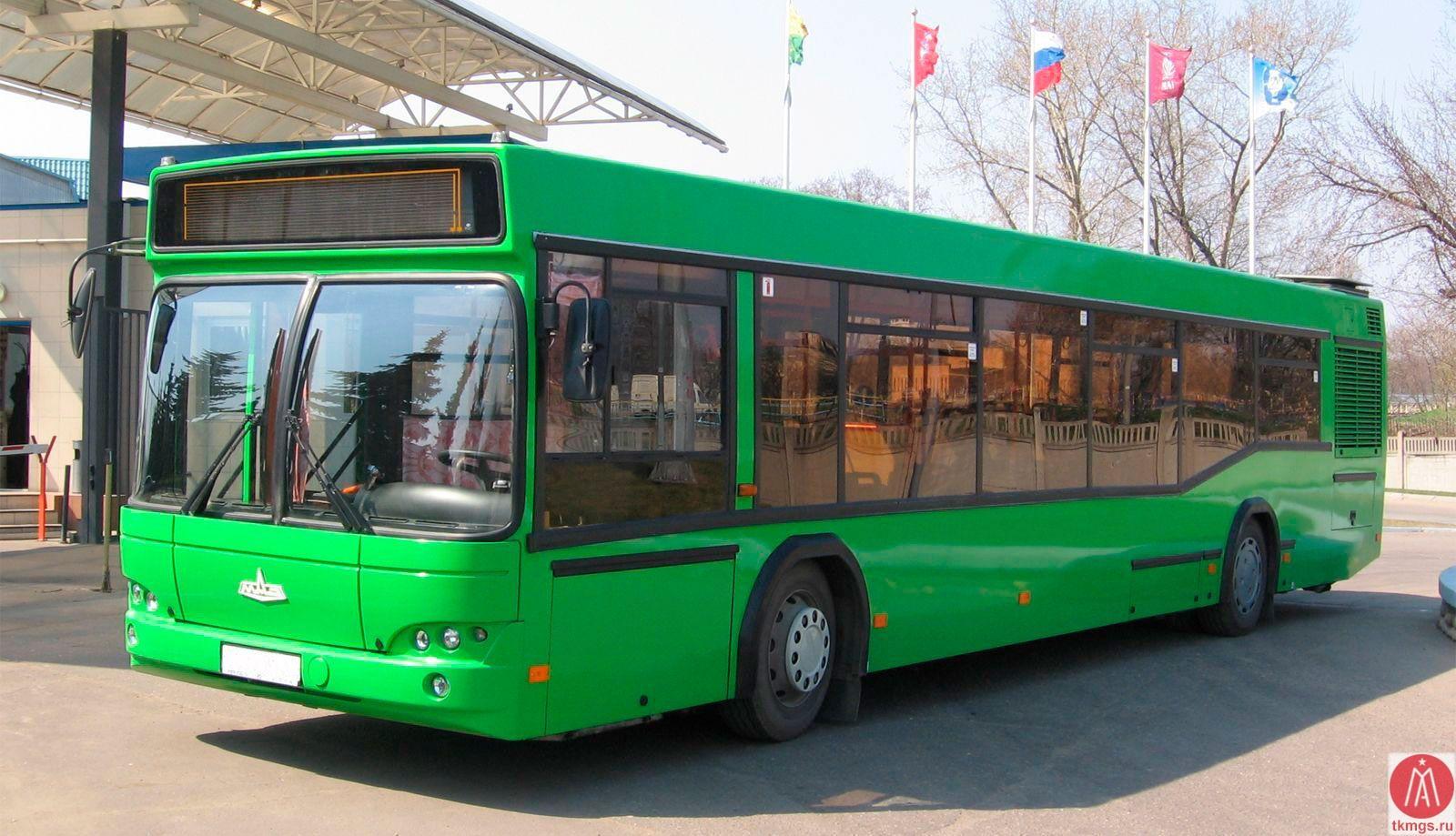 МАЗ 103565 - Вид сбоку автобуса